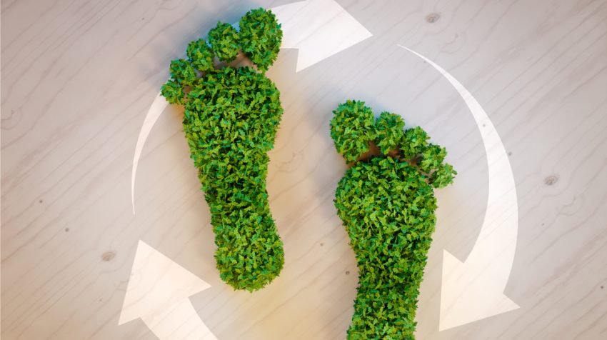 Reducing Your Carbon Footprint Just Got a Little Easier